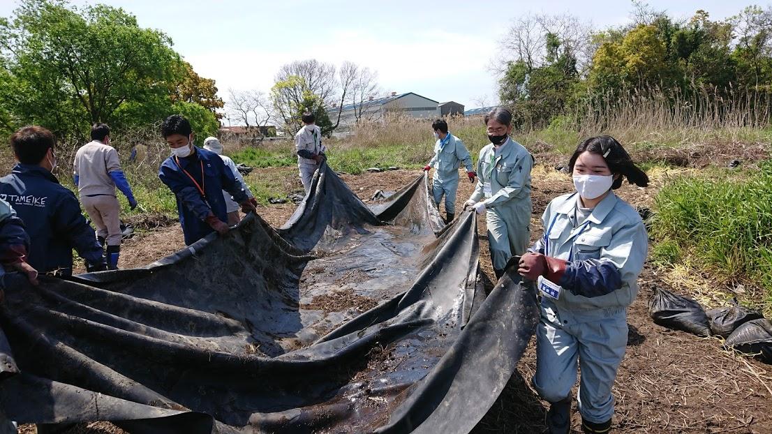 令和3年度 新仏池(しんぶついけ)ナガエツルノゲイトウ駆除作業4月15日(木)