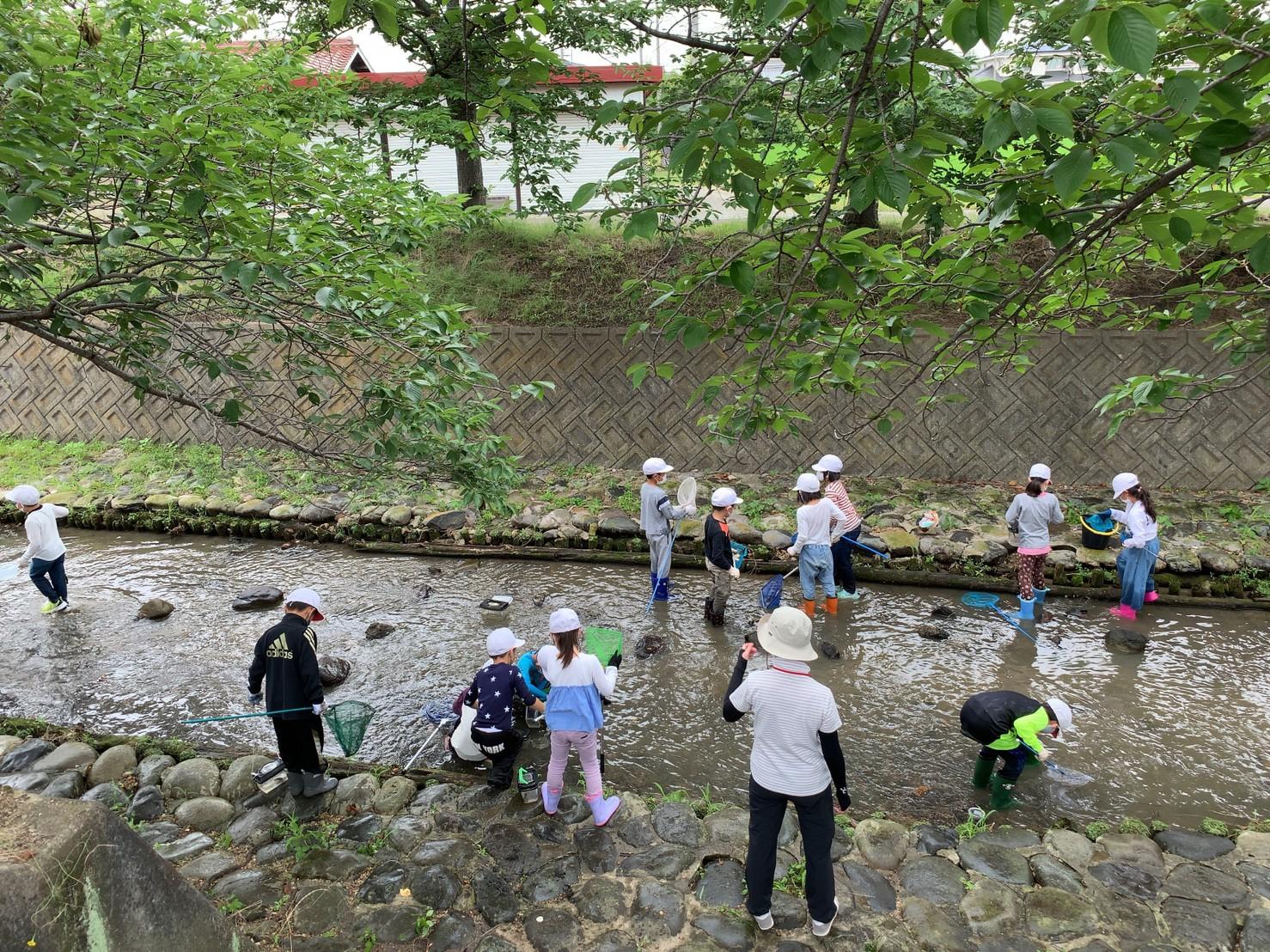 自然観察するために作られた川みたい。せせらぎですよ。大雨の時は近づかないようにね。