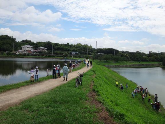 高丘東小学校3年生のため池学習 令和2年7月30日(木)