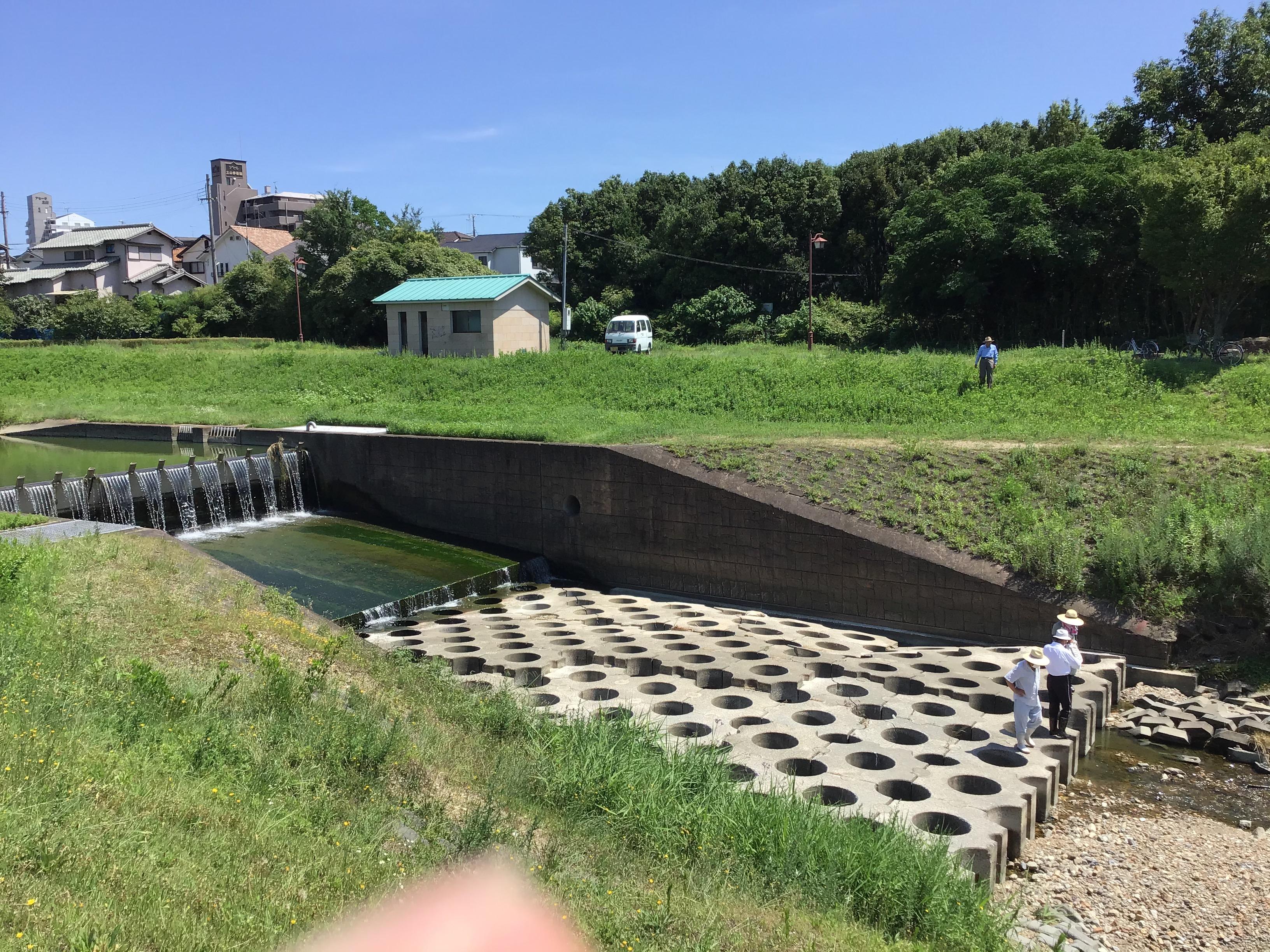 転倒井堰(左端)と対面は出会いの森(野添北公園)