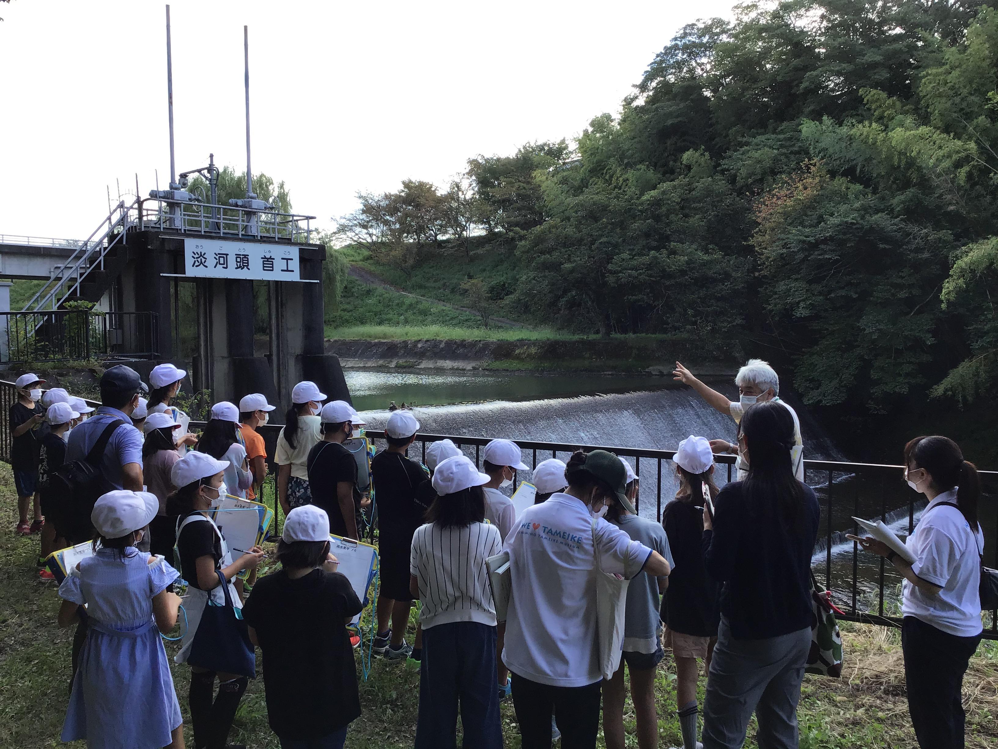 淡河川頭首工 長さ28m 高さ4m 沢を堰き止め水を溜め、川の水を揚げて横の水路から加古大池まで水がいってます。