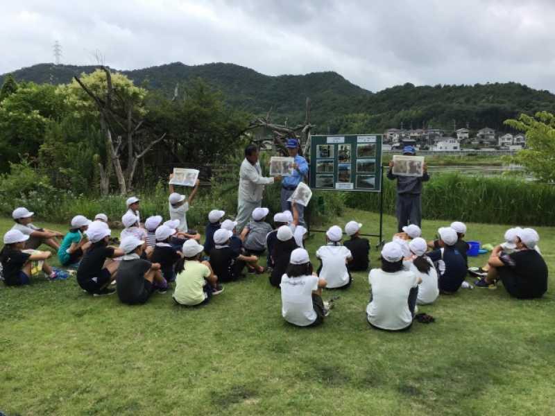 阿弥陀水田ビオトープ 田んぼの管理や生き物観察体験