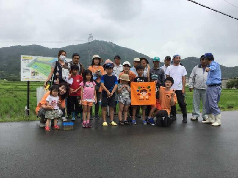 阿弥陀町水田ビオトープ さし苗・草引き・生き物観察