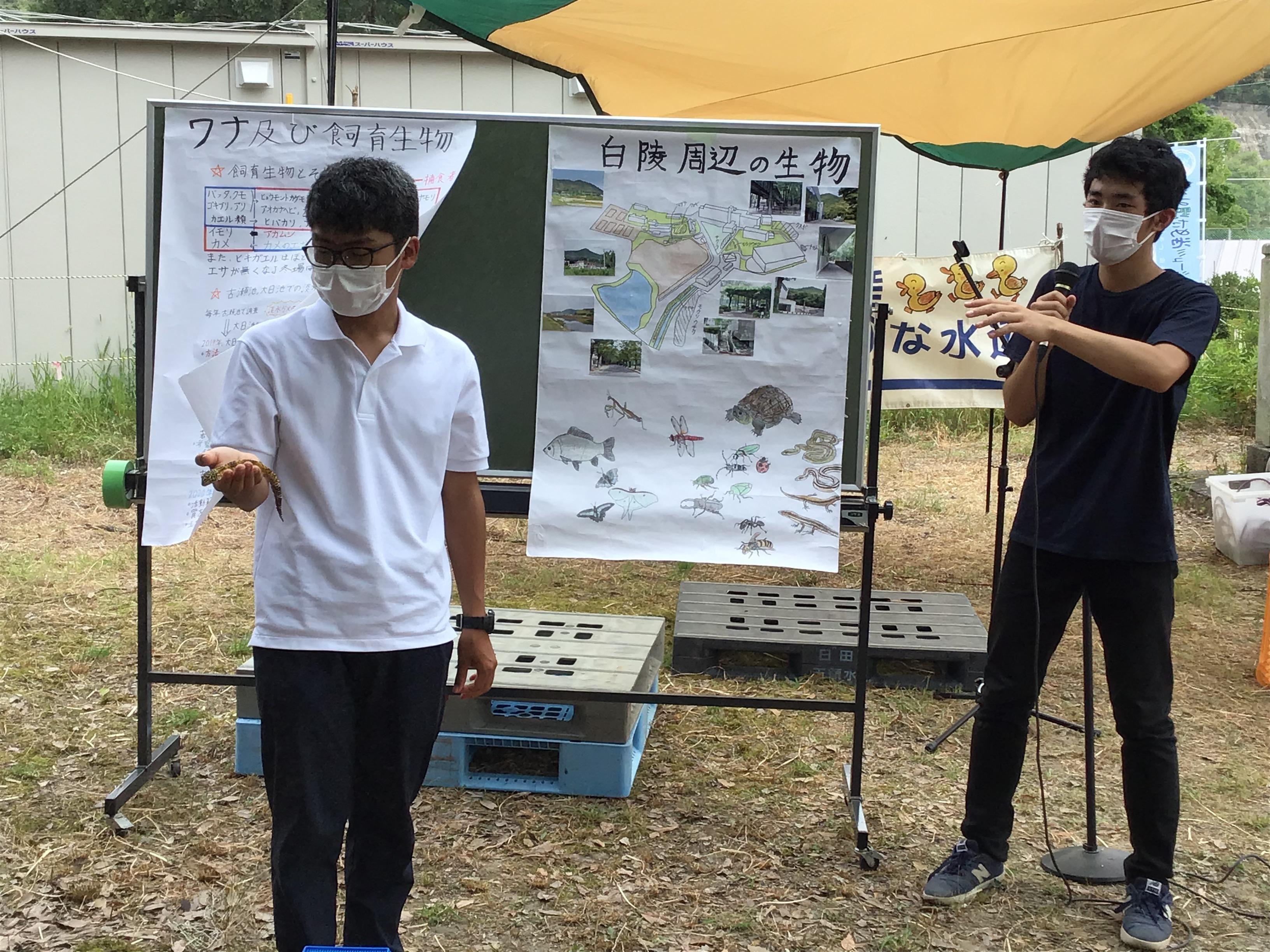 2時限目は、白陵中学・高校周辺の生物調査報告と飼育生物紹介の金山桂太(左側)さんと吉矢周一(右側)さん