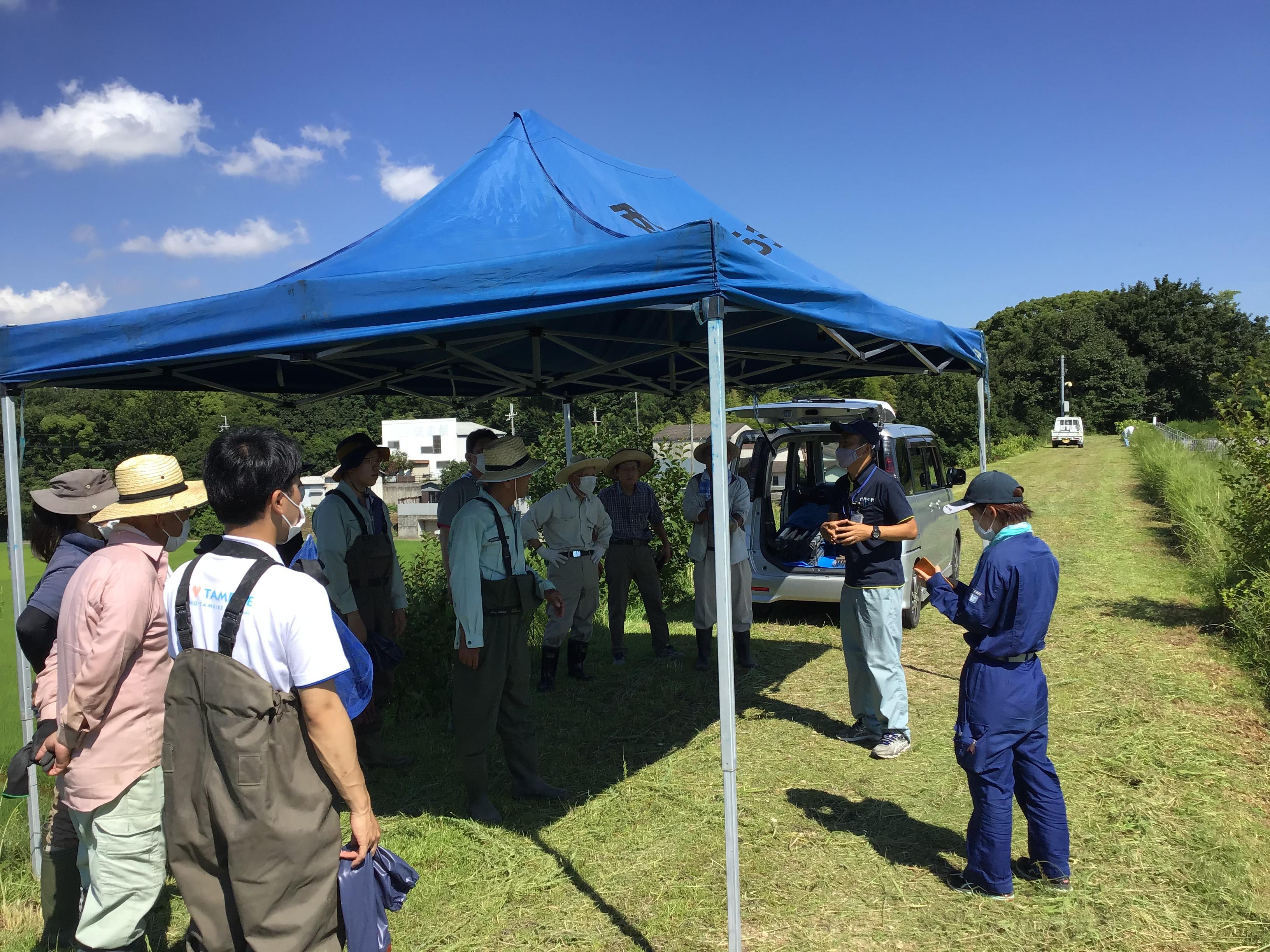 明石市の大本係長(右から二人目)が土のう袋にナガエを入れる場合、水中作業の方がナガエが浮いてて入れやすいなど、経験からの説明をされました。