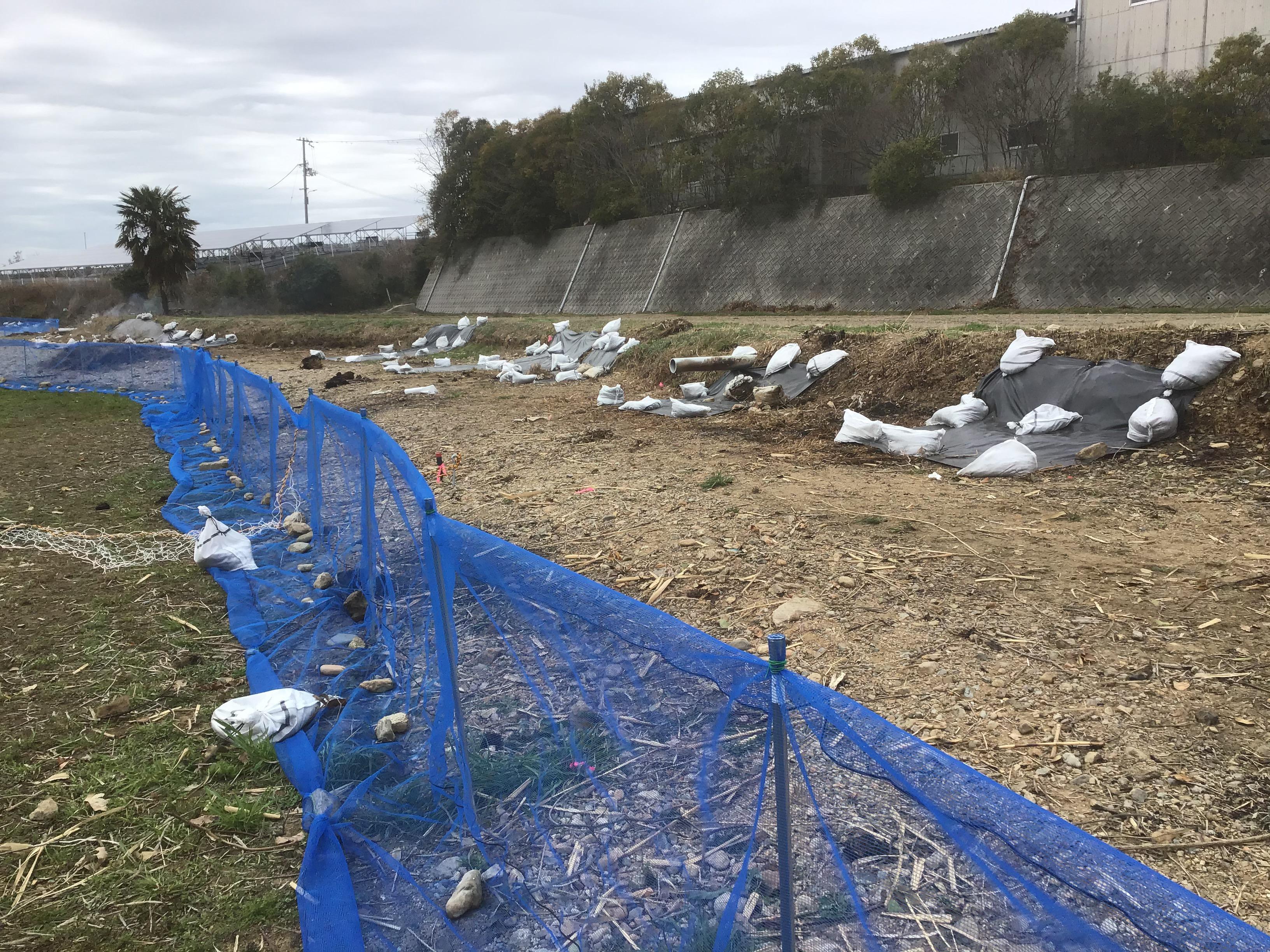 手前青い網は漂着防止柵。堤防斜面には利水シート。現場で作業しましたが、このシート中中のものです。幅2m×長さ50m×厚み0.5㎜×重さ60kgを裁断使用してます。