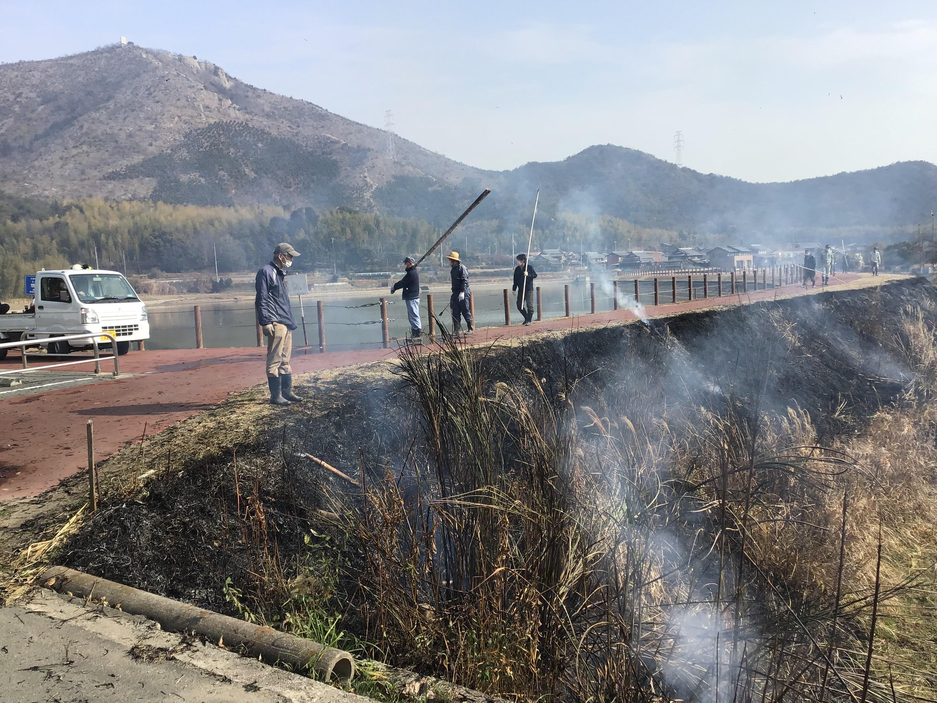 惣毛池堤外側。役員が担いでいるのは、長い竹で付火をします。