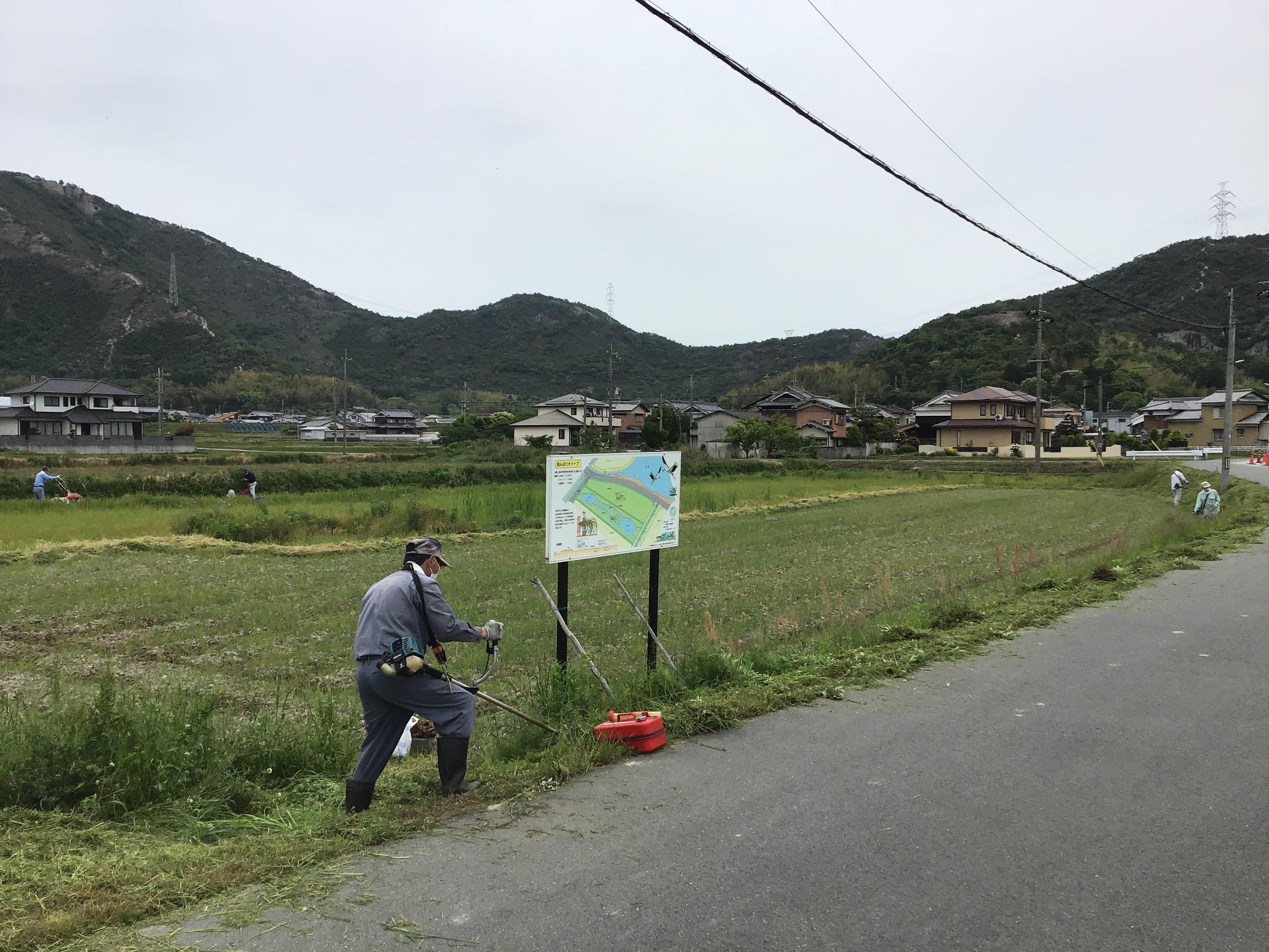 田んぼビオトープの畦畔の草刈りをする生石ため池協議会野々村会長