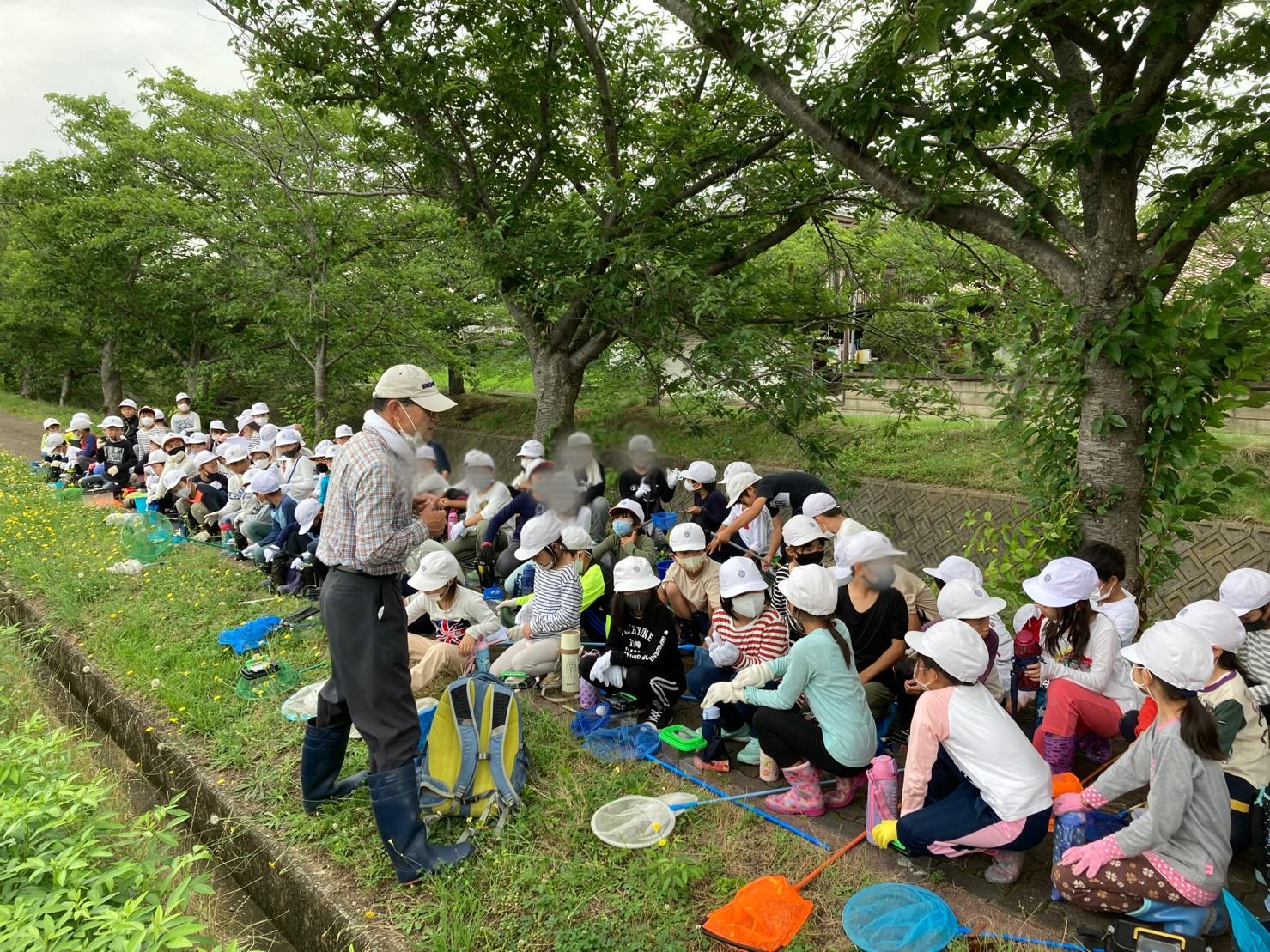 つかまえた❢ 『くもりがわの生き物探検』天満小学校(3年生)環境学習