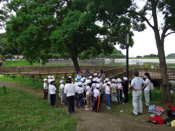 高砂市立阿弥陀小学校ため池学習(場所:市ノ池公園)