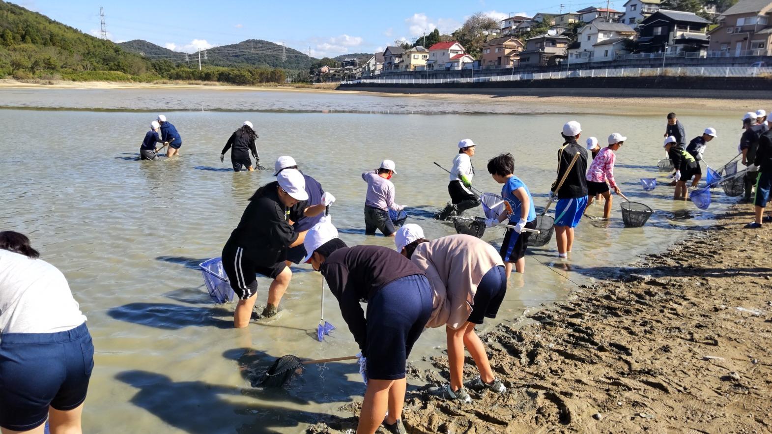 ❝ため池に入る。泥に入る。足をとられる。生き物を触る体験❞ 加古川市立上荘小学校 下池じゃことり体験:「ため池」ふるさと教育プログラムモデル支援事業