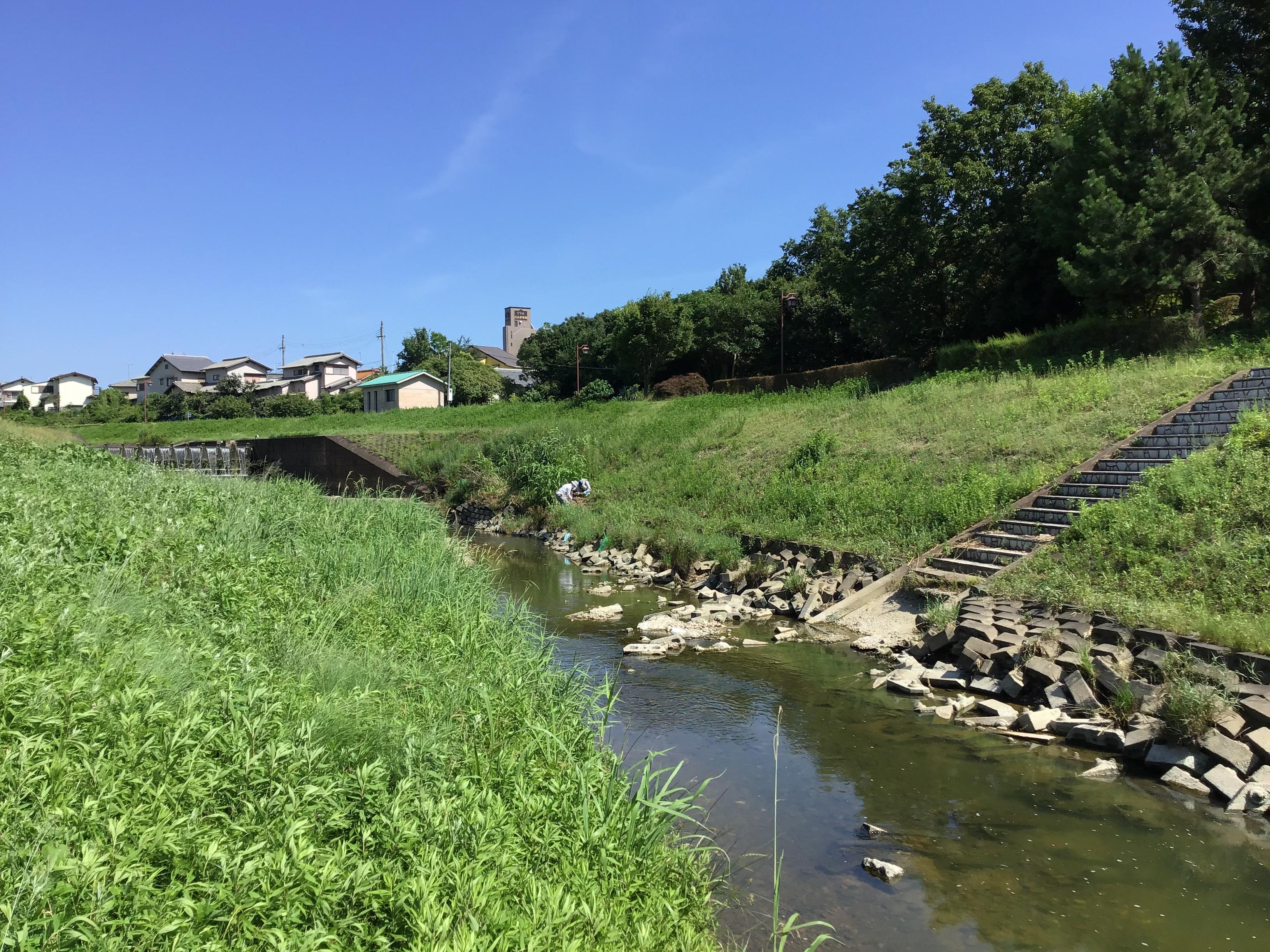 喜瀬川の堤体の中央部ぐらいまで、先日の大雨により水位上昇した。