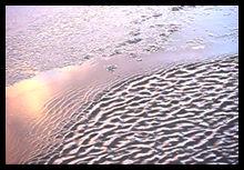 風が寒を持ってやって来た。チャプチャプザブザブ 風と水がタンゴのステップを踏む。
